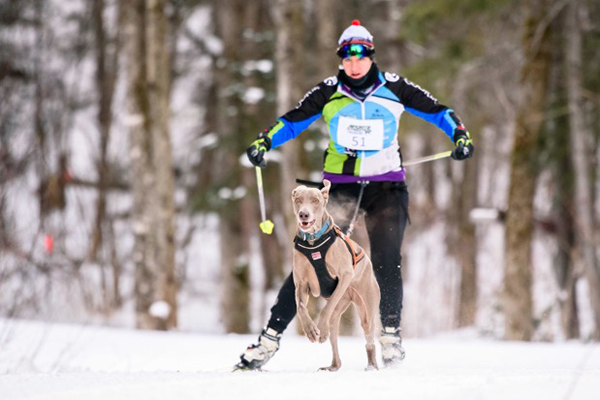 Anne O'Donnell skijoring
